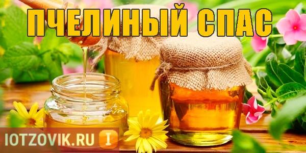 Пчелиный спас для суставов