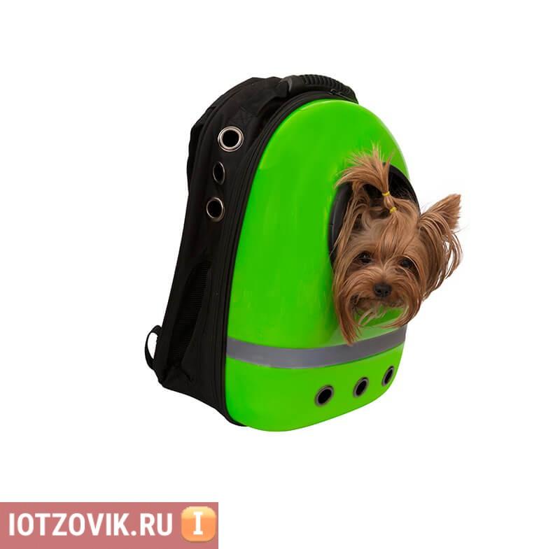 зеленый Space Pets