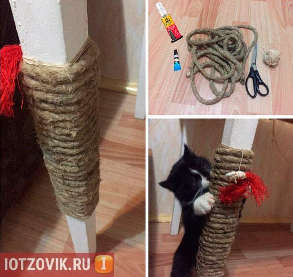 приучение кошки к когтеточке