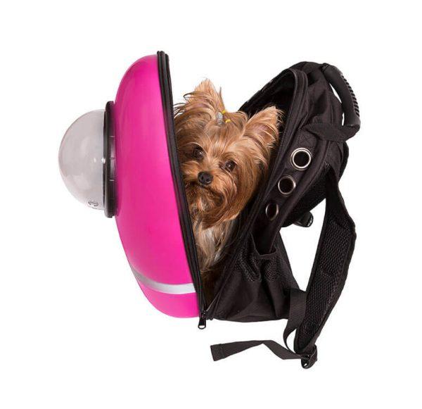 розовый рюкзак для животных